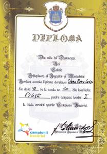 diplomaStaicu